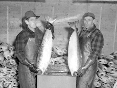 Les coopératives de pêcheurs au Québec : un précédent inspirant pour ouvrir les perspectives (1/2)