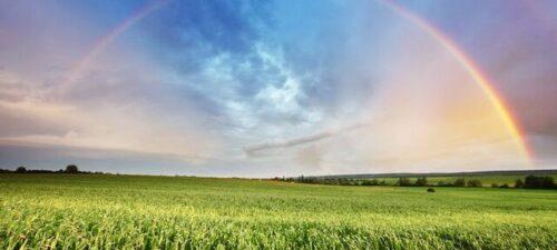 Un plan pour une économie verte ou une politique de transition ?