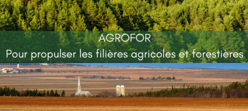 L'unité d'intervention AGROFOR : Un instrument de premier plan pour le développement des domaines agricoles et forestiers